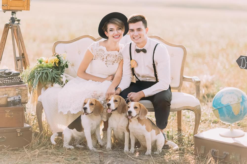 Hochzeit vintage hunde
