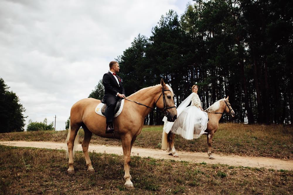Hochzeitsmotto Pferde Vierbeiner
