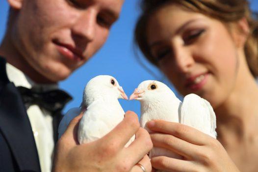 Hochzeitsbräuche, die jedes Brautpaar kennen sollte