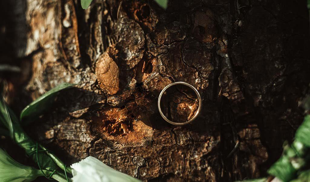 lost wedding ring 2
